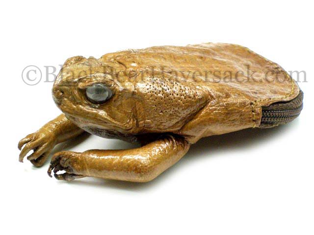 Tanned Frog Coin Purse